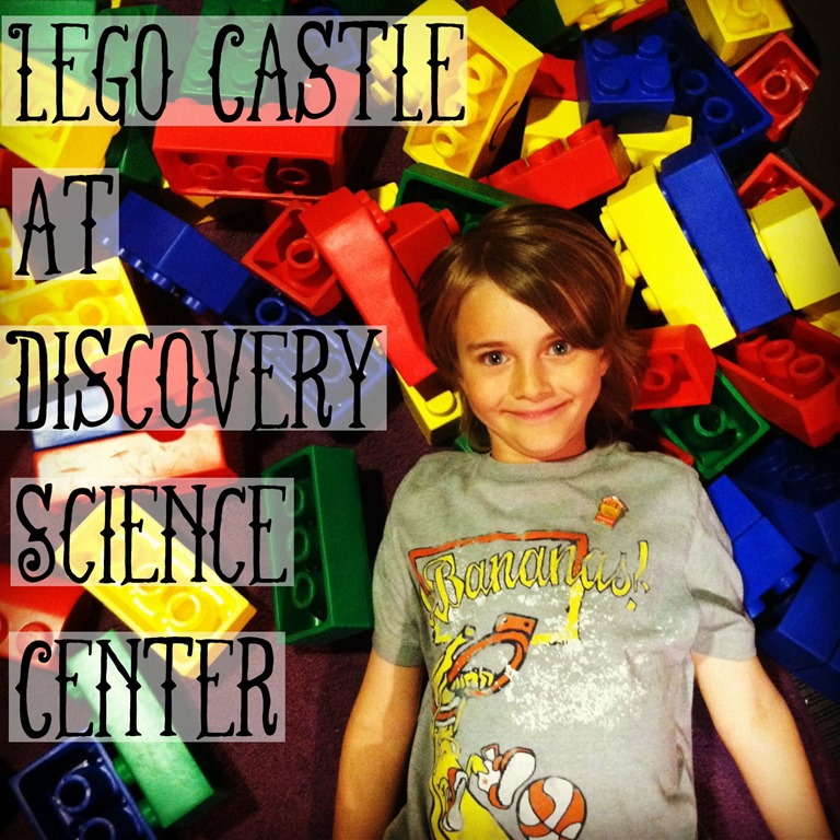 Discovery Science Centers Lego Castle Adventure